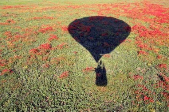 Полет на воздушном шаре Днепр в группе